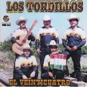 Los Tordillos 歌手頭像