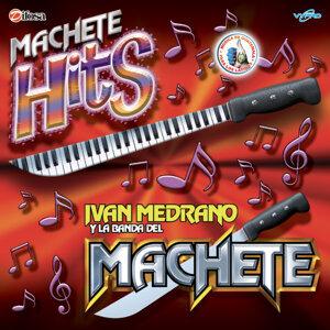 Ivan Medrano y La Banda del Machete 歌手頭像