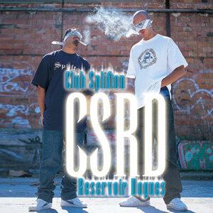 CSRD 歌手頭像