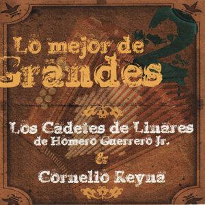 Los Cadetes de Linares de Homero Guerrero Jr. 歌手頭像