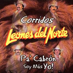 Leones Del Norte 歌手頭像