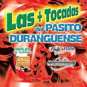 Las + Tocadas del Pasito Duranguense 歌手頭像