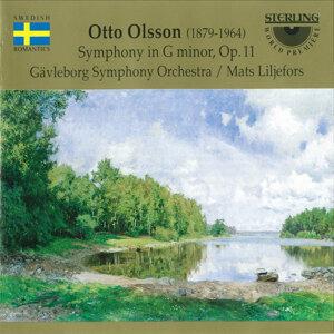 Gävleborg Symphony Orchestra 歌手頭像