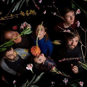 Dirty Projectors (骯髒計畫)