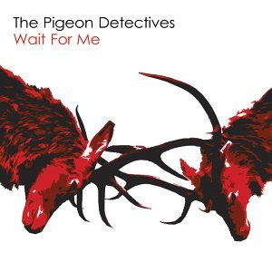 The Pigeon Detectives (菜鳥警探樂團) 歌手頭像