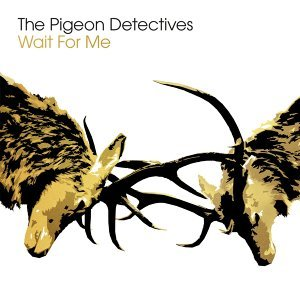 The Pigeon Detectives (菜鳥警探樂團) 歌手頭像