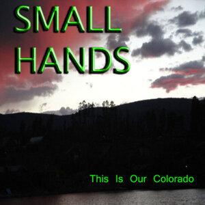 Small Hands 歌手頭像