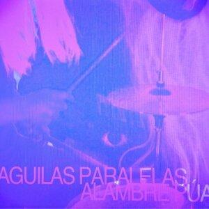 Aguilas Paralelas 歌手頭像