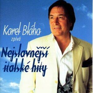Karel Bláha 歌手頭像