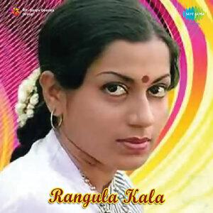 B. Narasimha Rao 歌手頭像