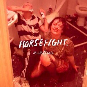 Horsefight 歌手頭像