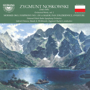 National Polish Radio Symphony Orchestra 歌手頭像