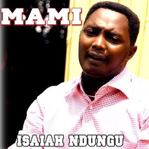 Isaiah Ndungu 歌手頭像