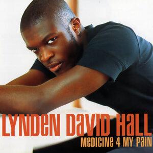 Lynden David Hall 歌手頭像