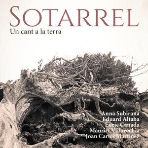 Sotarrel 歌手頭像