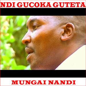 Mungai Nandi 歌手頭像