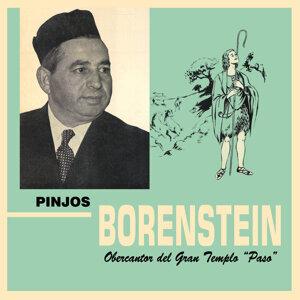 Pinjos Borenstein 歌手頭像
