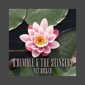 B.Bumble & The Stingers 歌手頭像