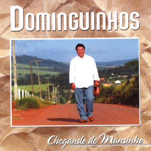 Dominguinhos 歌手頭像