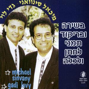 מיכאל סינואני וגדי לוי 歌手頭像