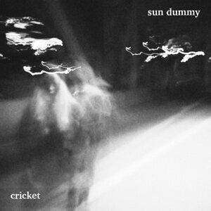 Sun Dummy 歌手頭像
