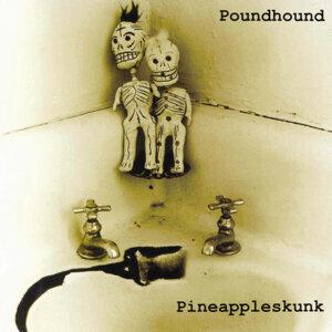 Poundhound 歌手頭像