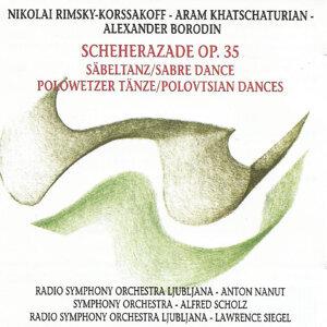 Radio Symphony Orchestra Ljubljana,  Symphony Orchestra 歌手頭像