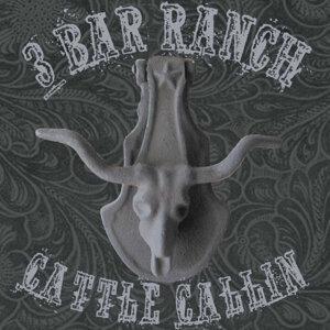 Hank 3's 3 Bar Ranch 歌手頭像