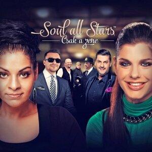 Soul All Stars 歌手頭像