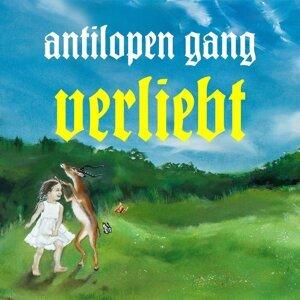 Antilopen Gang 歌手頭像