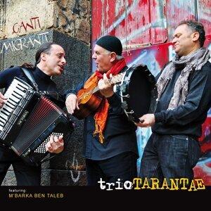 Trio Tarantae 歌手頭像