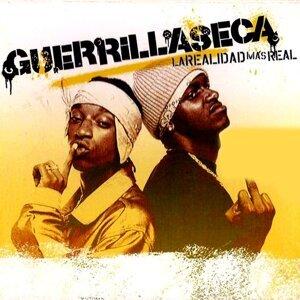 Guerrilla Seca 歌手頭像