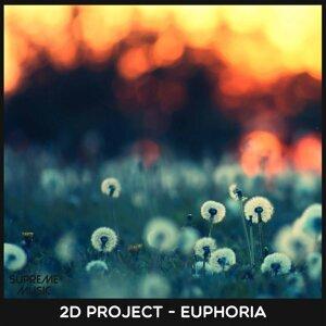 2D Project