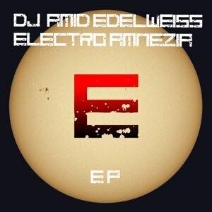 DJ Amid Edelweiss 歌手頭像