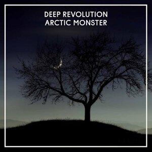 Deep Revolution 歌手頭像