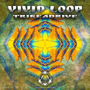 Vivid Loop 歌手頭像