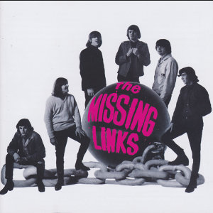 The Missing Links 歌手頭像