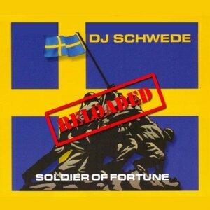 DJ Schwede 歌手頭像