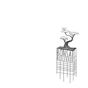 Bonsai Boulevard 歌手頭像