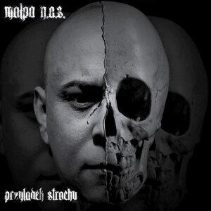 Malpa N.A.S 歌手頭像