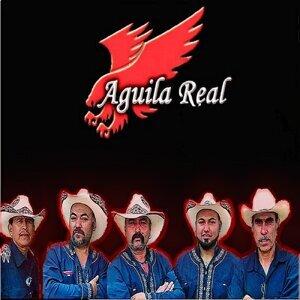 Aguila Real 歌手頭像