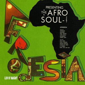 Afro-Soultet