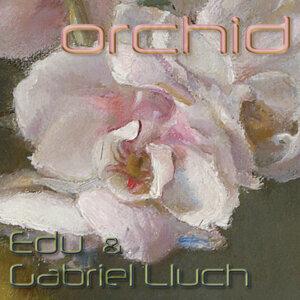 Eduardo Del Signore  Gabriel Lluch 歌手頭像