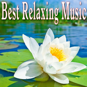 Music for Meditation and Relaxation 歌手頭像