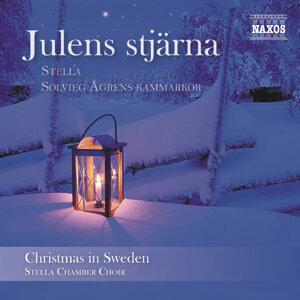 Stella - Solvieg Ågrens kammarkör 歌手頭像