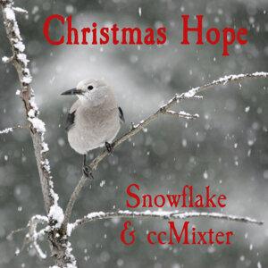 Snowflake & ccMixter