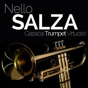 Nello Salza, Christiano Storino, Vincenzo Romano 歌手頭像