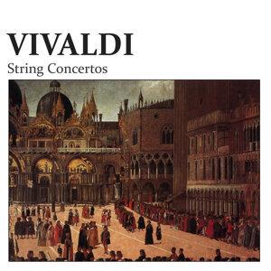 Venice String Ensemble, Giuliano Fontanella 歌手頭像