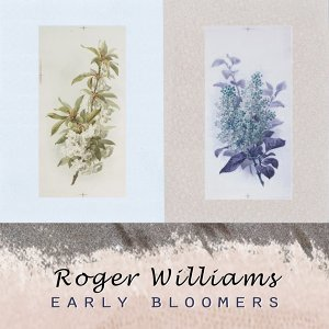 Roger Williams 歌手頭像