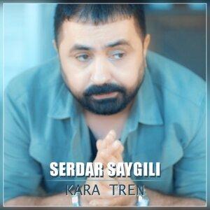 Serdar Saygılı 歌手頭像